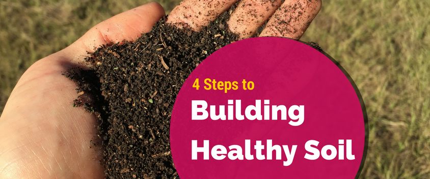 4-steps-to-building-healthy-soil